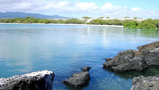 Galapagos Island - Land Based Adventure Tours
