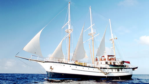 First Class 8 day Galapagos cruise - Machu Picchu Christmas Tour