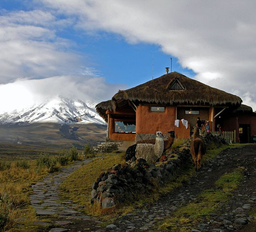 Tour Day 12. Papallacta - Cotopaxi B, L